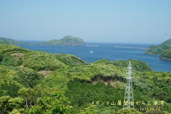 DSC06000三浦湾.JPG