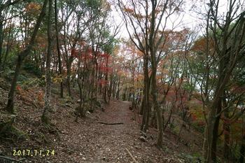 DSC07507・登山道.jpg
